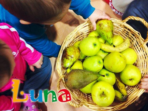 Semana especial de las frutas