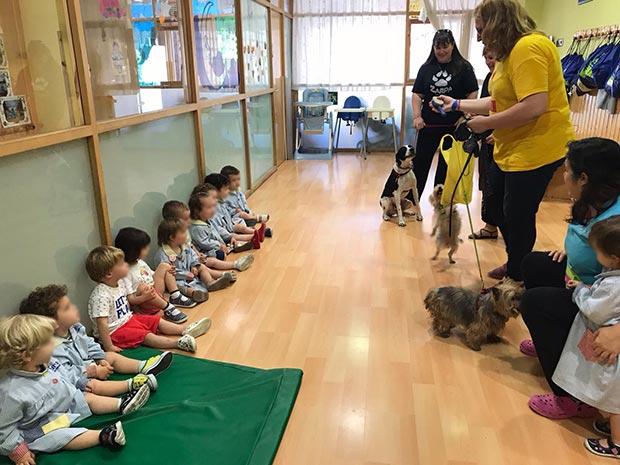 Nos visita la asociación de protección animal ZARPA