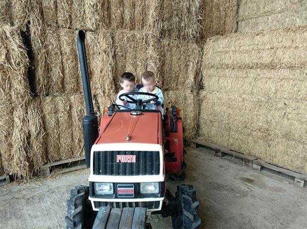 Excursión a la granja-escuela 2018
