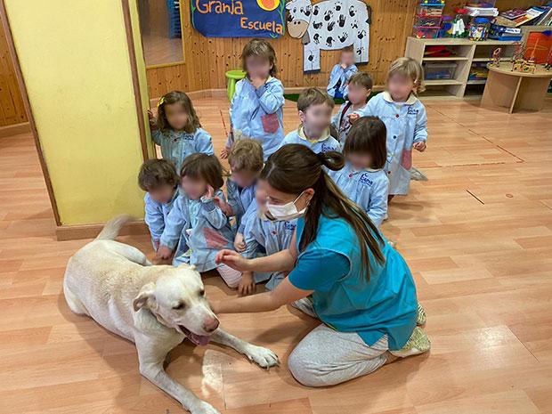 Visita de Marley, un amigo canino muy especial